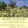 死別・離別した方向けわかちあいの会/春日井市9月20日(月・祝)グリーフケアCafeの画像