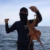 タコ釣り!の画像