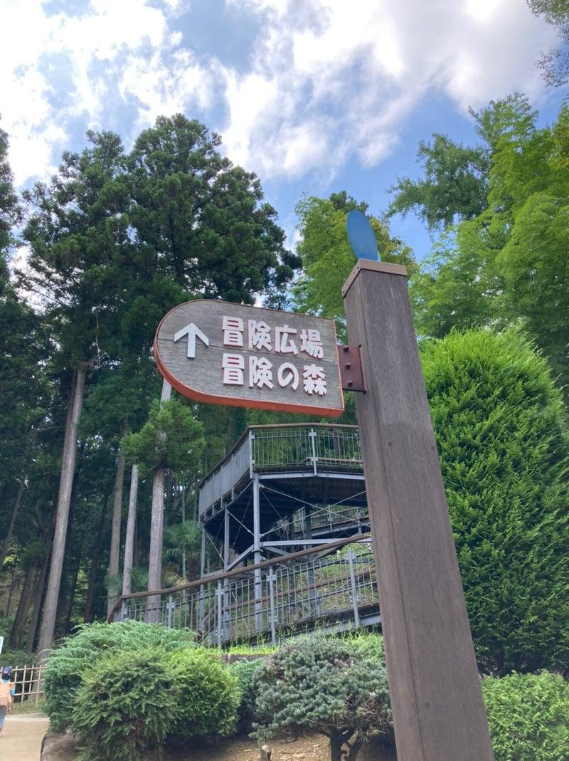 o1078144014992605318 - toiro平塚 8月27日 山登り、宮ヶ瀬ダムへ!