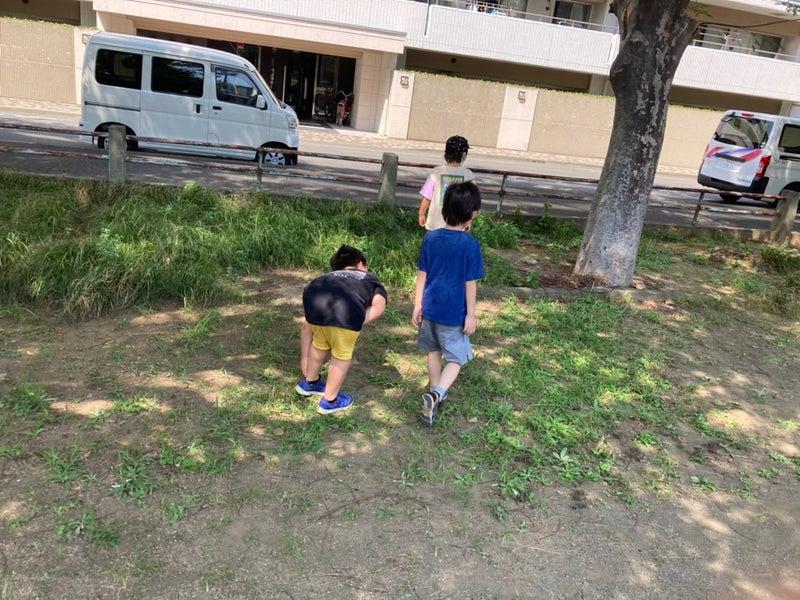 o1080081014992624286 - toiro平塚 小さな海賊たちの宝探し