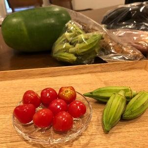 新種野菜?の画像