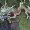 1日参りそして龍からのメッセージの画像