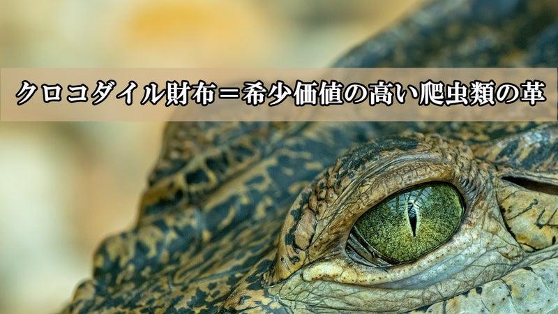 クロコダイル財布=希少価値の高い爬虫類の革