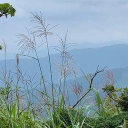画像 夏トレ★鉢伏高原練習会~絶景の坂道&トレイル の記事より 7つ目