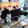 【お客様リメイク】大きなクマのぬいぐるみの画像