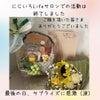 「にじいろLifeサロン」最後の日のサプライズ♡の画像