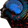 量子場脳のパラレルワールドの画像