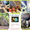 2021年秋 日本ツアーが叶うことになりましたの画像