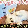 店長だいちゃんブログ【ミキサー買いました!】の画像