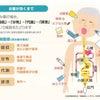 肝機能腎機能がお薬には大切の画像