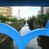 街散歩/目黒川の画像