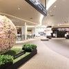 北海道・吉方位家族旅行 その6 『空港内の天然温泉』の画像