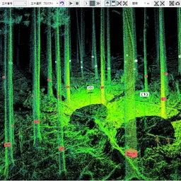 画像 令和3年度埼玉県林業技術者育成研修 day14 の記事より 6つ目