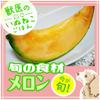 【PICK UP食材】メロンの画像