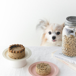 ドッグフードと水だけで作れる、犬用デコレーションケーキの画像