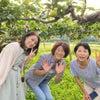 梨こさんの梨畑に行ってきましたの画像