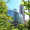 街散歩/六本木・毛利庭園の画像