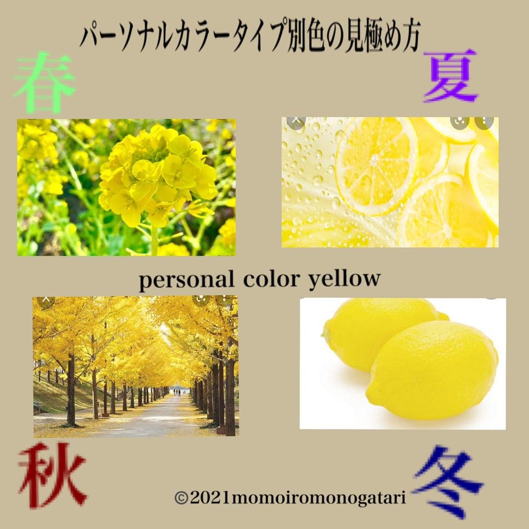 【プロが教える】似合う黄色の見つけ方 パーソナルカラー