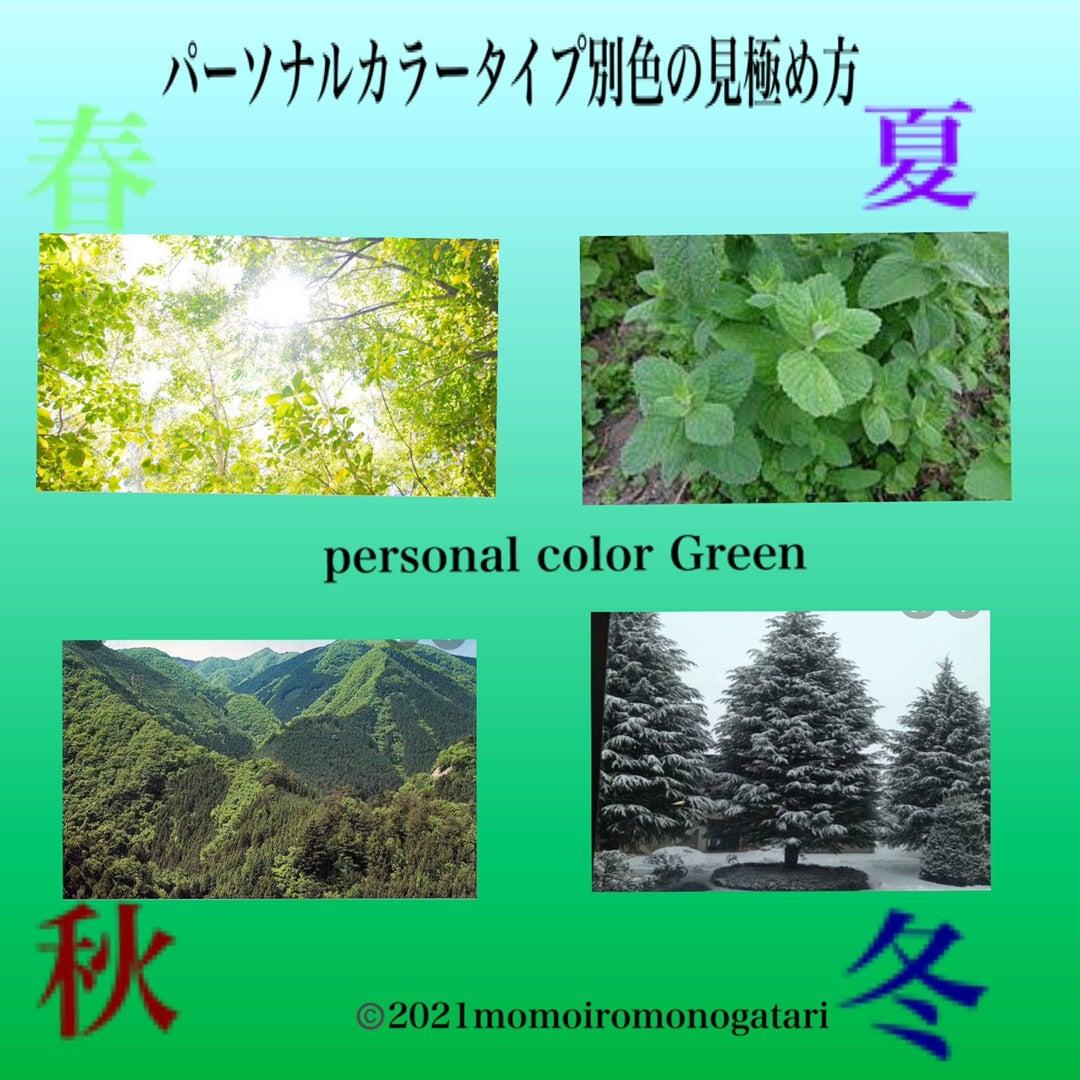 【プロが教える】似合う緑の見つけ方 パーソナルカラー