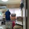 本日9月11日(土)所沢さくらねこ診療所オープン日です!の画像