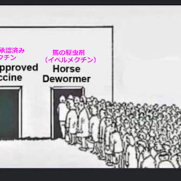 画像 WHOの科学者がイベルメクチンを攻撃し、患者に有効な治療法を提供しなかったことで死刑になる可能性 の記事より 3つ目