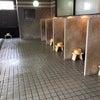 公衆浴場等は次世代に引き継ぐべき文化なのだ!の画像