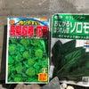 野菜高騰につき葉物野菜の種蒔きの画像