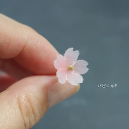 画像 透明感が可愛すぎる❀ほんのりピンクの桜は〇〇で作りました の記事より 2つ目