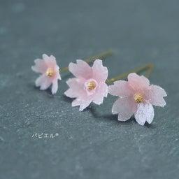 画像 透明感が可愛すぎる❀ほんのりピンクの桜は〇〇で作りました の記事より 1つ目