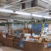 広島空港にて✈️の画像