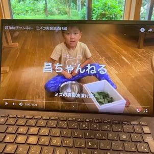 【限定公開】昌太YouTubeデビュー♪ ミズの実の漬物お手伝い編の画像