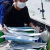 午前タチウオ便(9月15日(水))の画像