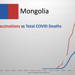 画像 国連総会議長: 2022年末までに地球上のすべての人にワクチン接種を行うべき の記事より 10つ目