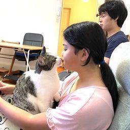 画像 保護猫から教わったこと♪我が家で初めて迎えるバースデー の記事より 2つ目