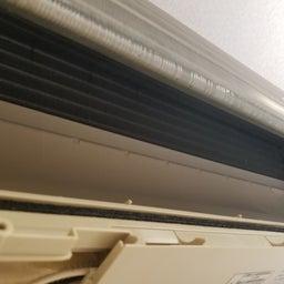 画像 2021-09-16   今日のお掃除機能付きエアコンとカーペットのクリーニング の記事より 4つ目