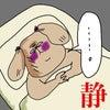 【マンネちゃんの憂鬱】聞いてあげてください。「間に合うってばよ!!」の画像