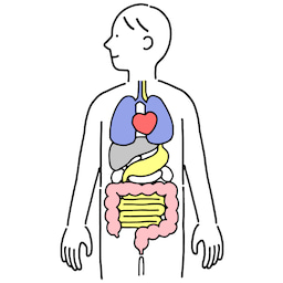 画像 シミと臓器とアロマの関係 の記事より 1つ目
