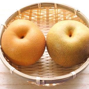 梨の季節の画像