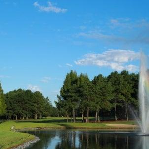 ゴルフ名言(81)の画像