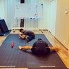 【お子さんの体幹はスポーツに耐えられますか?】体幹トレーニングは重要です!!の画像
