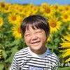 ☆満開の向日葵の中で笑顔も満開☆の画像