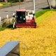 北海道*農家生活の備忘録