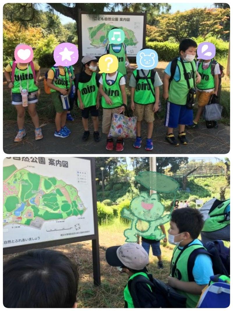 o1128150415003882734 - 9月20日(月)☆toiro仲町台☆こども自然公園