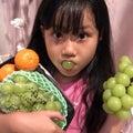 FUJI SAKURA塾 mamaのブログ