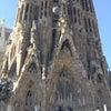 スペイン旅行記①1度は行くべき世界遺産サクラダファミリアとグエル公園の画像