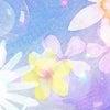 キレイ系の素材を作りました☆の画像