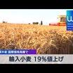 輸入小麦19%値上げ!!インフレの波来た!?