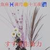 今日は魚座♓️満月❤️十五夜❤️すすきの花言葉❤️秋の薩摩芋で節約ダイエット❤️❤️✨