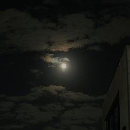 画像 お月見 の記事より 1つ目