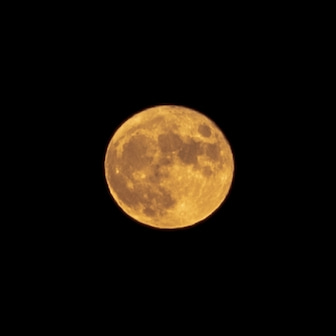 今日は満月の中秋の名月!